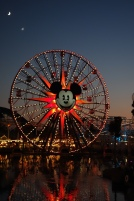 California Adventure Twilight