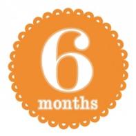 6 months4